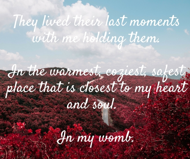 They lived their last moments with me holding them.In the warmest, coziest, safest place that is closest to my heart and soul.